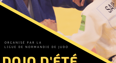 2e édition du Dojo Eté à Petit Couronne